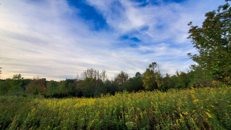 Rare 50 Acre Millbrook Land Parcel – N. Tower Hill Rd